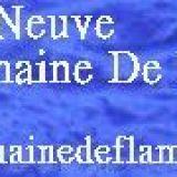 Photo de Terre-Neuve de l'élevage Elevage DU DOMAINE DE FLAMBEAU