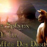 Photo de Sphynx de l'élevage La Vallée Des Dieux