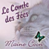 Photo de Maine Coon de l'élevage Le Comte des Fées
