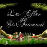 Photo de Sphynx de l'élevage Les Elfes de St Fromont