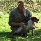 Photo de Épagneul breton de l'élevage LES ETANGS DE DAME BLANCHE