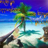 Photo de Rottweiler de l'élevage LES GARDIENS DU LAGOON