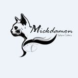 Photo de Sphynx de l'élevage MICKDAMON