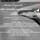 Marine Criquioche Ostéopathe animalier en Normandie