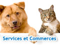 COTILLON N - MesSages Canins