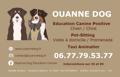 OUANNE DOG