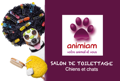 Salon de Toilettage Animiam