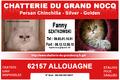 A la Chatterie du Grand Nocq