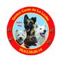 ABC DOG Multi Services