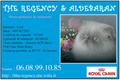 ALDEBARAN-THE REGENCY