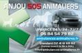 Ambulances Taxi Animalières - Anjou SOS Animaliers