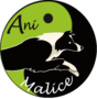 Ani'Malice Pension - Formation