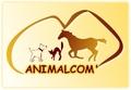 ANIMALCOM'
