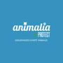 ANIMALIA PROTECT - Assurances santé animaux