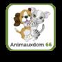Animauxdom66