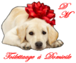 Au dogs-models