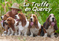 BASSET HOUND DE LA TRUFFE EN QUERCY