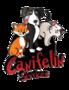 Canifelin Services