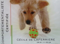 Cécile de LAFERRIERE
