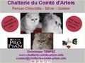 Chatterie du Comté d'Artois