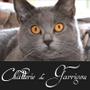 Chatterie du Garrigou