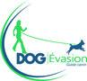 DOG Evasion