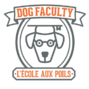 Dog Faculty