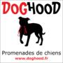 Doghood