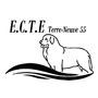 Ecole du chien de travail à l'eau Terre-Neuve 55