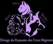 DU ROYAUME DES CROCS MIGNONS