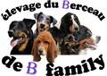 élevage du berceau de b family