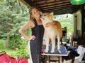 Esprit Canin 04 - Toilettage en salon et à domicile
