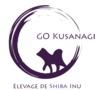 Go Kusanagi