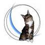 Gwendoline LE PEUTREC REDON, Comportementaliste spécialiste du chat, du chaton e