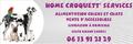 Home Croquett' Services