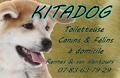 Kitadog