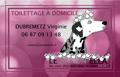 Le-Salon-Ella Toiletteur de chiens à domicile
