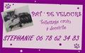 Pat' de Velours