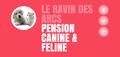 Pension canine et féline Le Ravin des Arcs