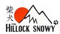 Shiba Inu From Hillock Snowy