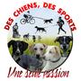 Team Des Chiens, Des sports, Une Seule Passion