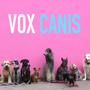 Vox Canis