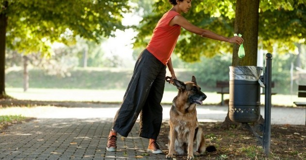 apprendre la proprete a son chien dehors