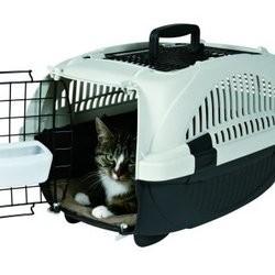 cage pour chat comment voyager pratique voyager avec son chat wamiz. Black Bedroom Furniture Sets. Home Design Ideas