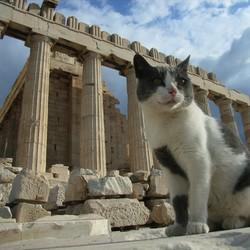 chet Grèce antique