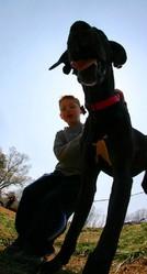 relation enfant et chien