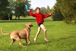 chien enfant communication jeu