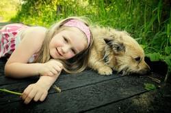 communication visuelle enfant chien