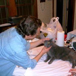 médecine douce chat