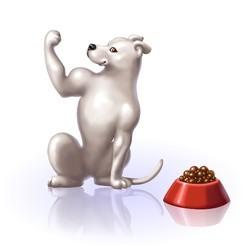 vitamines pour chien